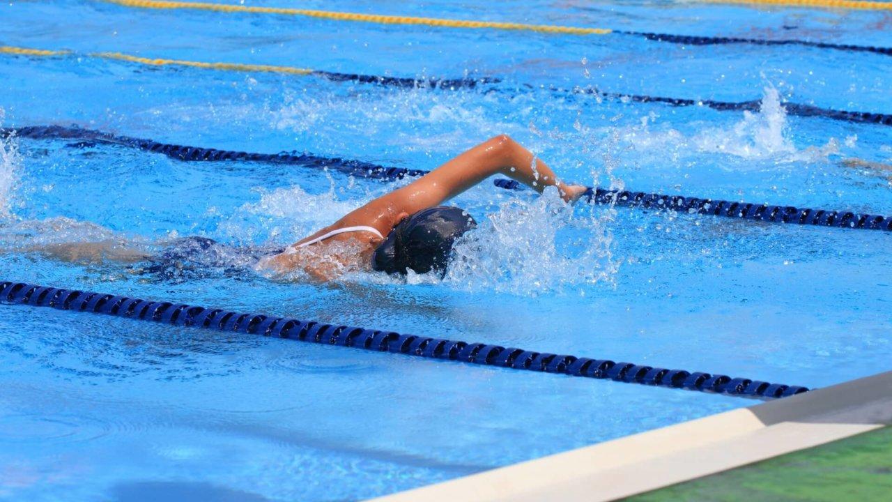 バタフライはどれくらいで泳げる...
